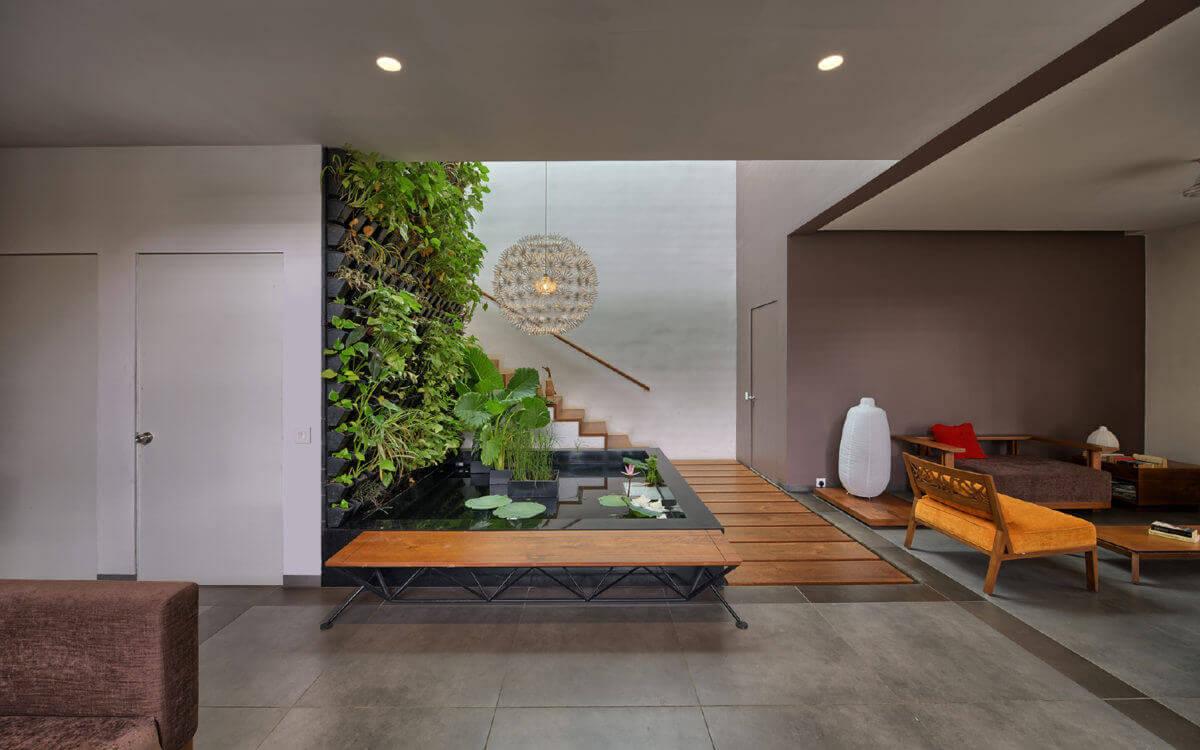 indoor plants in living room ideas